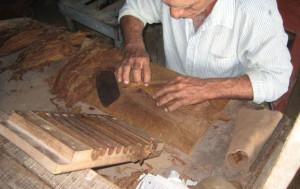 Cigar Rolling Cuba Style